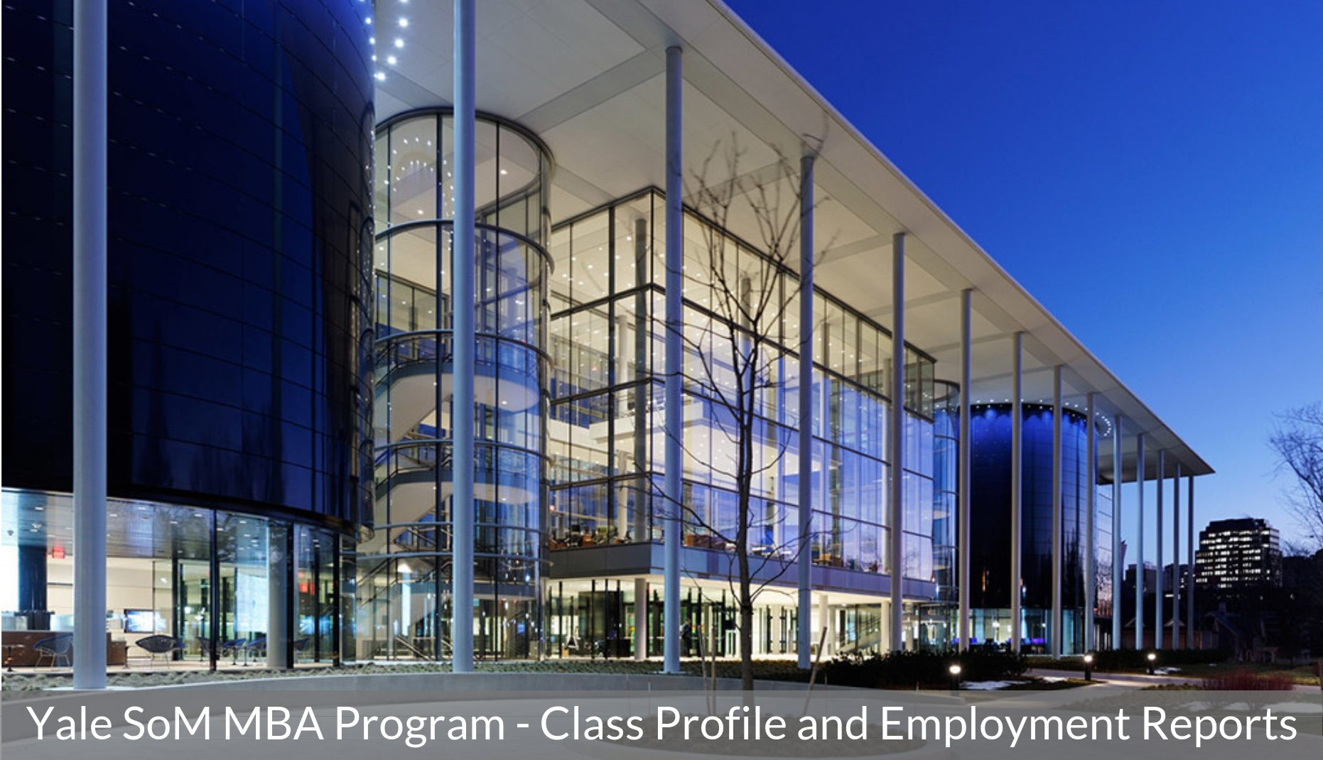 Yale School of Management - Yale SoM MBA Program - Class Profile, Career and Employment Report